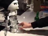 Robot do towarzystwa