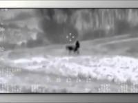 Zabawa z Osłem dron kamera usa army Irak, Isis he he:-)