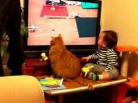 Dziecko razem z kotem oglądają z wielkim zainteresowaniem telewizję