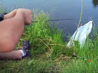 Łowienie ryb w 3 sekundy