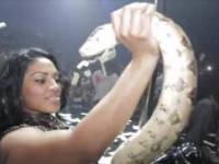 Ona i Wąż tańczą wciąż