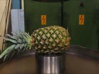 prasa hydrauliczna vs owoce
