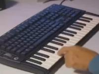 Szybka lekcja gry na keyboardzie