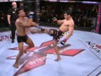 Niecodzienny nokaut w MMA poprzez front-kick