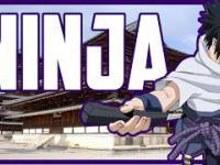 NINJA - WOJOWNICY CIENIA!