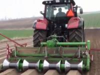 Agricultural Lifehack: Modern Planting and Harvesting of Rice, Onions and Grapes