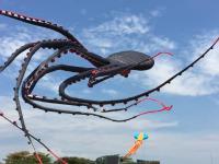 Ogromna i majestatyczna ośmiornica w powietrzu