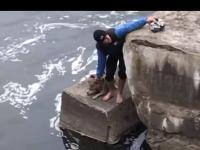 Ratowanie psa, który wpadł do kanału