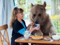 136 kilogramowy niedźwiedź jako zwierzak domowy