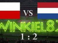 Polska - Holandia skrót meczu 1.06.2016 Gdańsk (1:2)