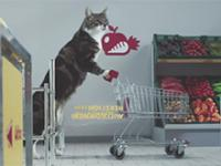 Gdyby koty robiły zakupy