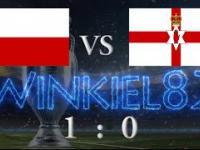 Polska - Irlandia Północna skrót meczu 12.06.2016 Nicea