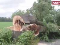 Szalejące burze nad Polską. Oto skutki nawałnic!