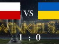 Polska - Ukraina skrót meczu 21.06.2016 Marsylia (1:0)
