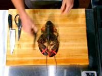 Gordon Ramsay pokazuje jak prawidłowo przyrządzić homara