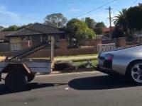 Lamborghini Murcielago do przewozu kóz