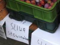 W Warszawie handlujemy wiśniami tak