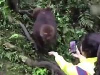 Patrzcie jaka słodka małpka!