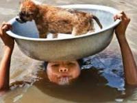 Ludzie ratują zwierzęta