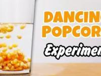 Tańcząca Kukurydza - Dancing Corn - Tanzen Mais