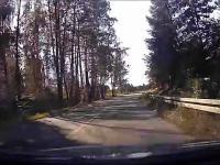 Szeryf drogowy level troll