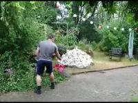 Eksplozja radości w ogrodzie