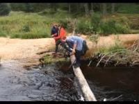 Jak nie przechodzić przez rzekę