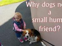Dlaczego psy potrzebują dzieci