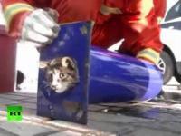 Ratowanie kotka przez strażaków który utknął w dość dziwnym miejscu