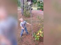 Zabójcza budka dla ptaków