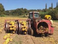 Mega maszyny świata: Traktor, Kombajn, Ładowacz, Układacz siana i inne