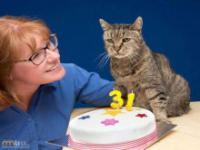 Nieoficjalnie najstarszy kot na świecie
