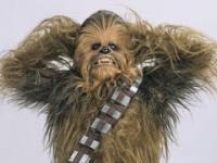 Różne przedmioty brzmią jak Chewbacca