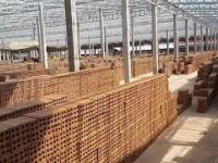 Produkcja cegieł