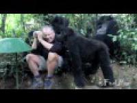 Bliskie spotkania z dzikimi zwierzętami
