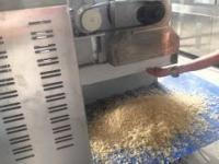 Plastikowy ryż