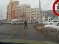 Człowiek i pies na przejściu