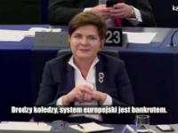 Francuz broni Polskę w Europarlamencie. krytykuje Niemców i mówi prawdę o UE