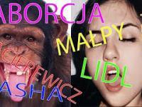 Wiadomosci eRZet Studio - 4 Aborcja, Małpy, Macierewicz, Lidl, Sasha