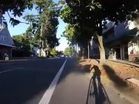 Kierowca atakuje rowerzystę za to, że ten przepuszcza pieszych na przejściu