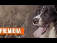 Sprawdź nowy klip Rahima i wesprzyj akcję charytatywną!