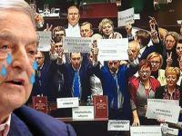 Okupacja Sejmu nic nie dała? Platforma traci poparcie nawet w sondażach TVN! | PrawicowyInternet.pl