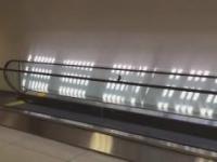 Ptaszek na platformie ruchomej