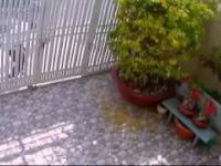Włamywacz trafił na ciężką bramę