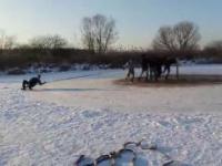 Ekstremalna jazda na sankach - Zima 2017