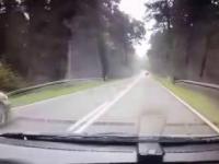 Szybki drift kończący sie w lesie - wypadek