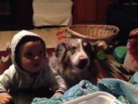 Matka uczy dziecko pierwszych słów - ale wygral pies
