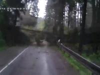Jedziesz sobie spokojnie górską drogą, a tu nagły atak drzew