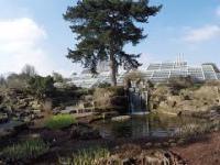 Niesamowity ogród botaniczny w londynie