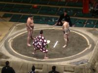 Brutalny nokaut w zapasach sumo